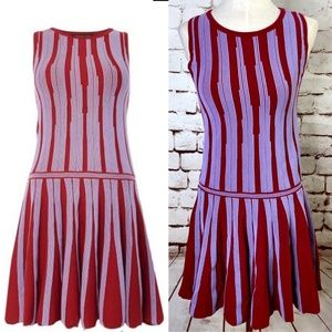 Endless Rose Red and Purple Stripe Ribbed Dress